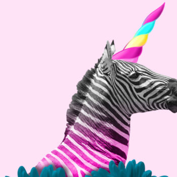unicorns-vs-zebras
